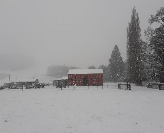 Snow blankets farmland near Heriot in West Otago. Photo: Paula Bisset