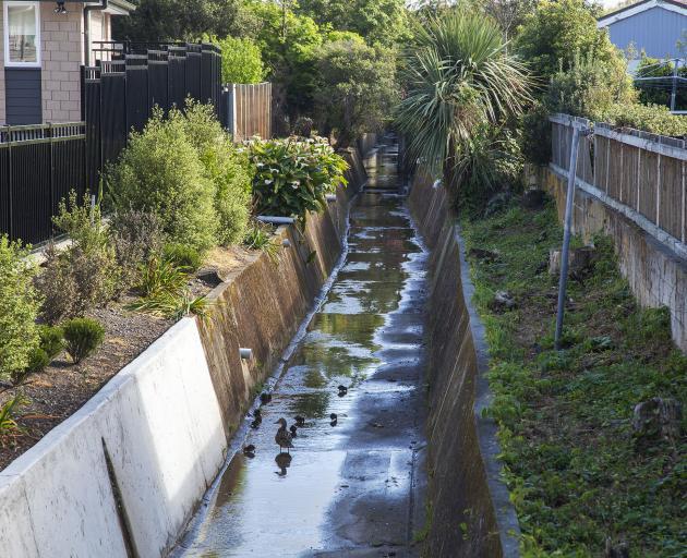 Albert Stream in St Martins. Photo: Geoff Sloan