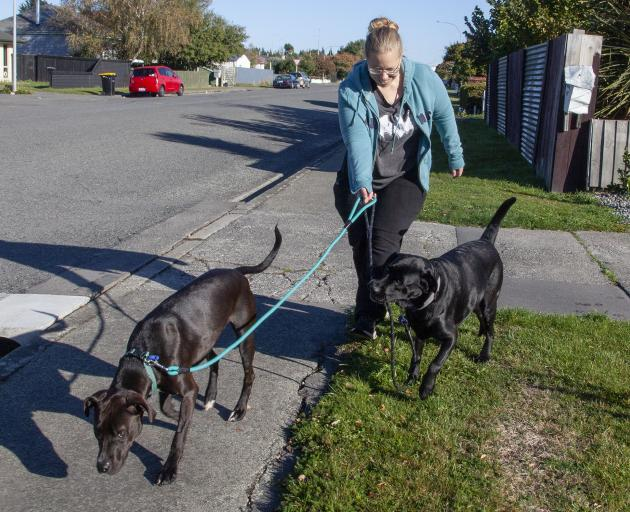 Denise walking Sophie and Molly. Photo: Geoff Sloan
