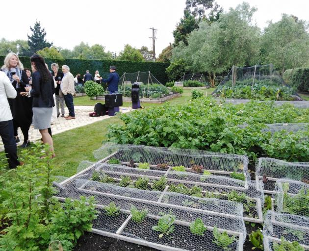 Drinks in the vegetable garden at Craggy Range winery in Havelock North. Photo: Hawke's Bay Tourism