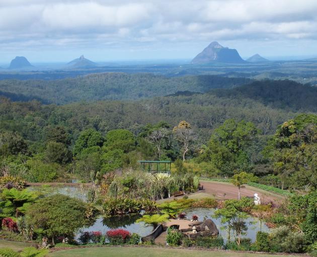 Looking over Maleny Botanic Gardens to the Glasshouse Mountains.PHOTOS: GILLIAN VINE