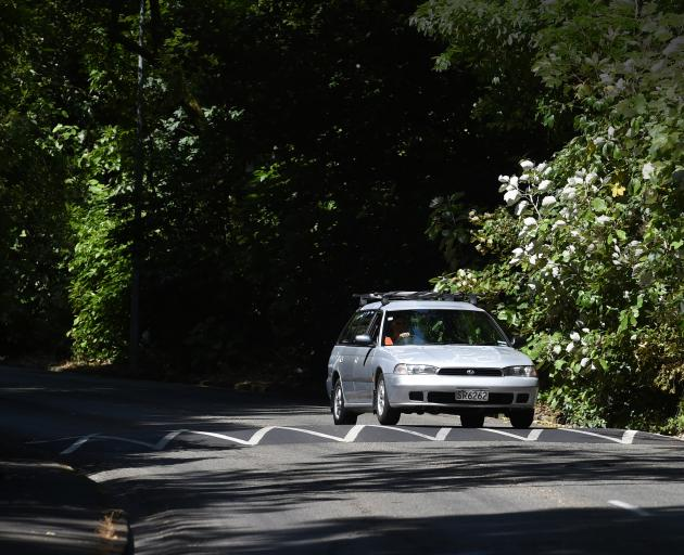 A motorist negotiates one of the new speed bumps installed in Maori Rd yesterday.