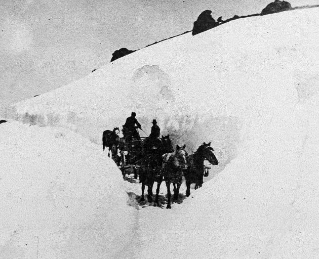 A carrier's horse team and wagon negotiating the Cutting on the Cairnmuir Range. This was a...