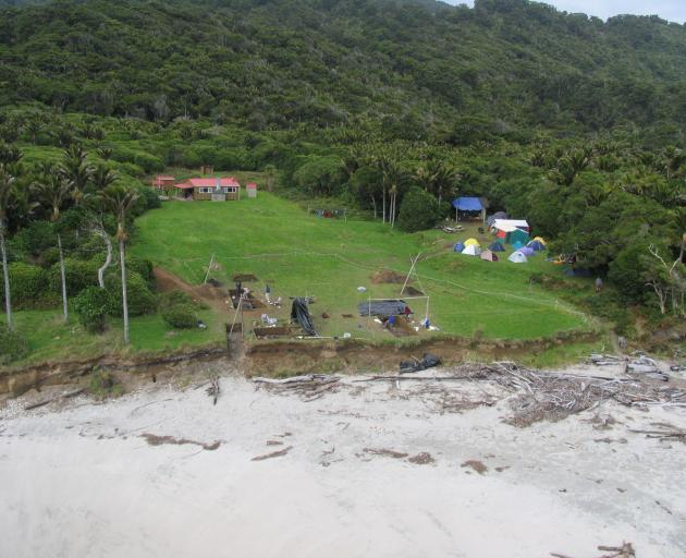An excavation at Cooks Cove, Tolaga Bay, at a site that spans the New Zealand sequence from...