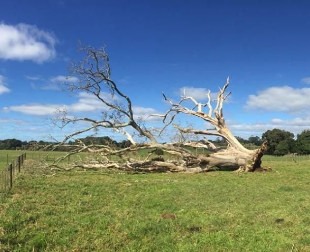 PHOTO: HERITAGE NEW ZEALAND