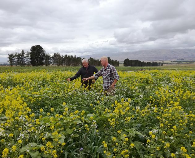 Peter Barret from Central Otago (right) with Southland farmer, Colin Matheson, who came to find...
