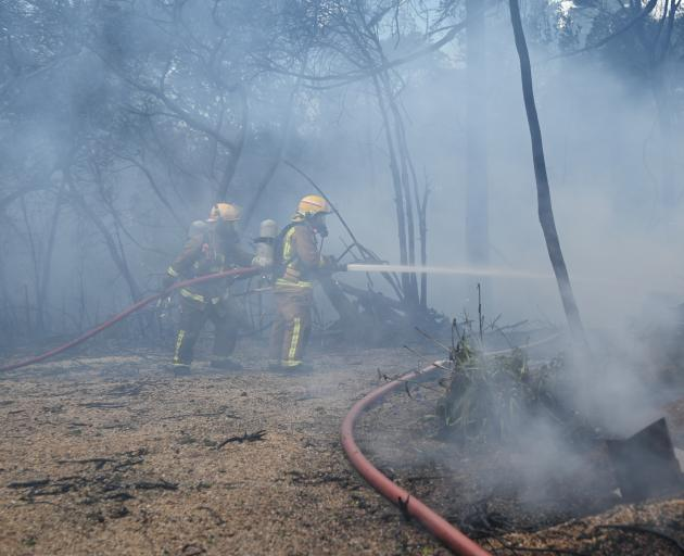 The fire spread to nearby trees and bushes, putting more homes under threat. Photo: Craig Baxter
