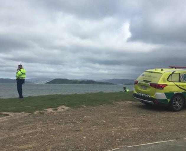 Windsurfers in trouble in Wgtn Harbour
