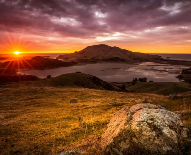 Overlooking Hoopers Inlet, Otago Peninsula, at dawn. PHOTO: DES BOWIE