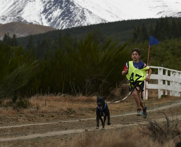 Sam Hughes and dog Maddi compete in a canicross event in Naseby. PHOTO: GARRICK CAMERON