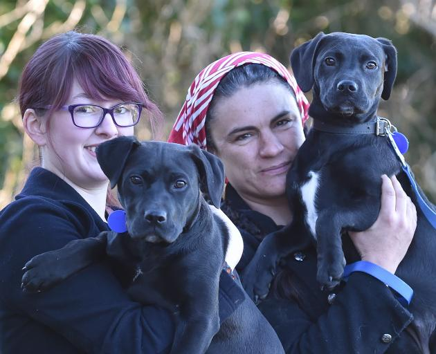 New dog owners Peita Ferens-Green (left) and Natasha Harvey hold dumped Labrador-cross pups Luna...