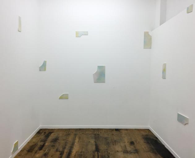 ''Pastoral Scheme'', by Amy Unkovich.