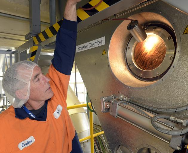 Roaster operator Rob Finch works his machine at the Cerebos Gregg's factory in Dunedin yesterday. Photo by Gerard O'Brien.