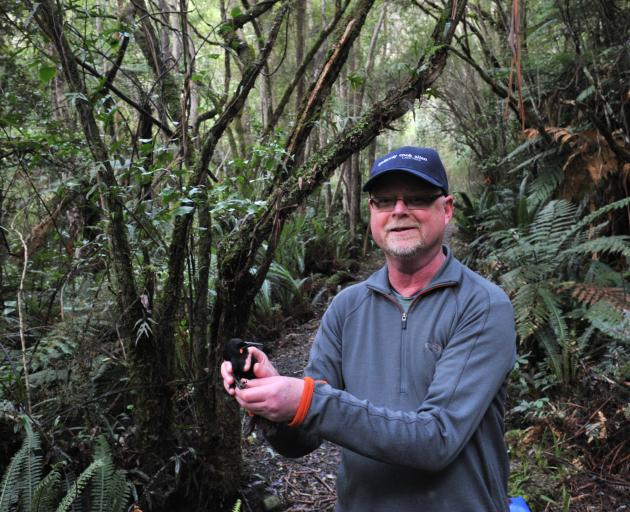 Prof Ian Jamieson releases a saddleback into the predator free environment at Orokonui...