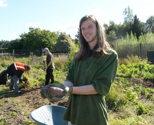 Otago Polytechnic student Luke Facer with potatoes fresh from the Kowhai Grove beds. Photo by Linda Robertson.