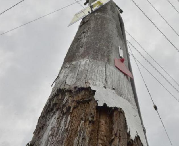 A planned power outage for parts of Dunedin has been cancelled as severe weather is forecast to...