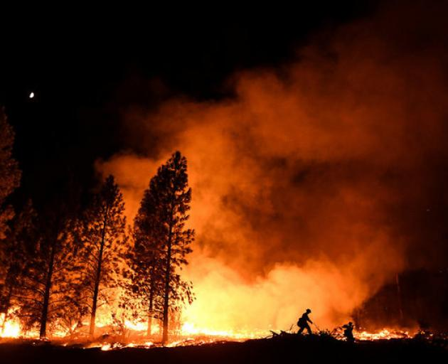 More than 45,000 fires have burned so far this year across the region, 15% more than in 2016, according to the National Interagency Fire Center.  Photo: Reuters