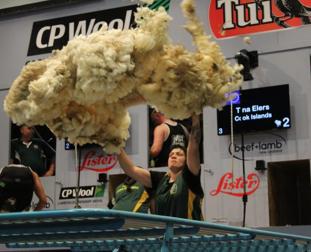 Tina Elers throws a fleece in the World Shearing and Woolhandling Championships team woolhandling final  this year. Photo: Nicole Sharp