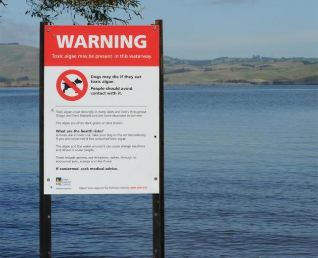 It's the second time this year a warning has been issued for Lake Waihola. Photo: ODT
