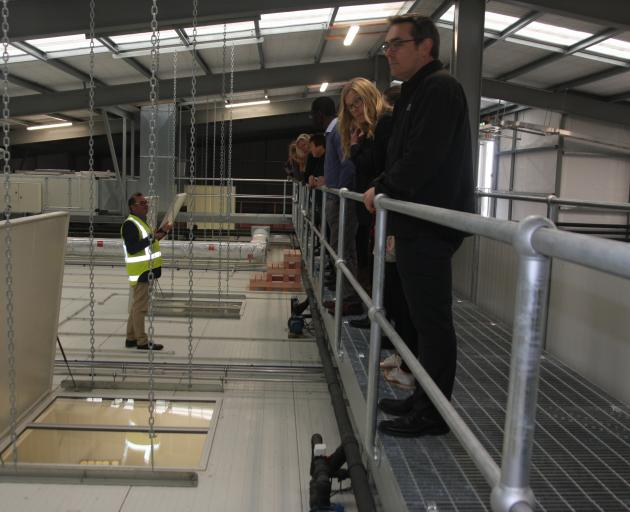 Whitestone Cheese chief executive Simon Berry, standing on top of the maturation rooms in...