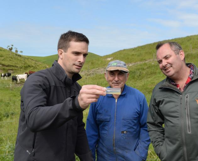hitestone Cheese head cheese-maker Chris Moran, Ardgowan farmer Allister Calder and Whitestone chief executive Simon Berry check one of the samples they took from an old water race on a Ardgowan farm for Penicillium roqueforti. Photo: Linda Robertson