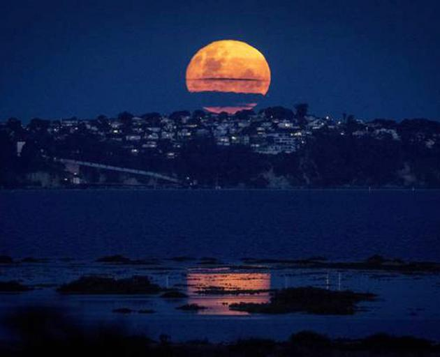 Supermoon in pictures: See unbelievable  shots of 2017 lunar spectacle