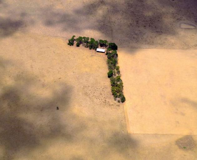A shed and line of trees can be seen in a paddock on a farm located on the outskirts of Melbourne. Photo: Reuters