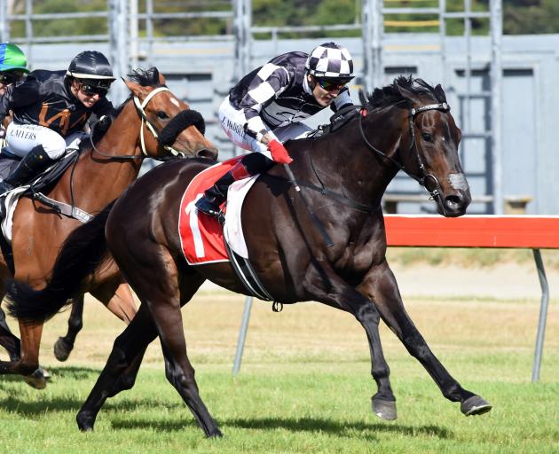 Kawi is looking to go one better than his eye-catching last-start second in the Telegraph in...