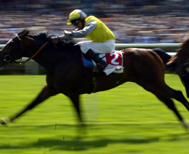 BoneCrusher ridden by Pat Eddery wins the Bonusprint Stakes. Photo: Getty Images