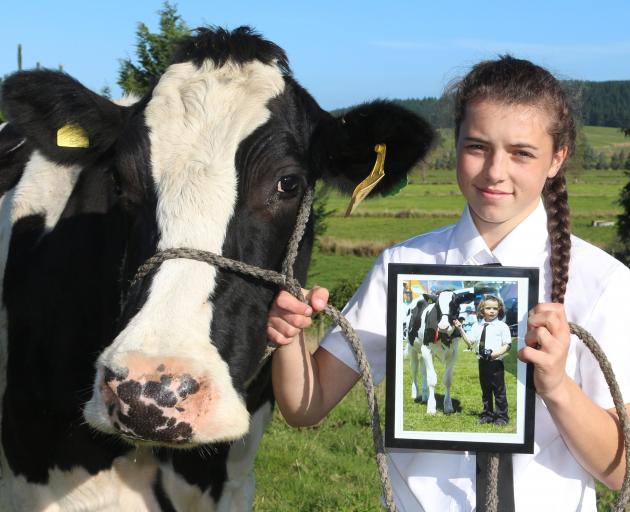 Lorna Buttono one of her favourite cows, Anglo Lheros Nina. She holds a photograph of herself...