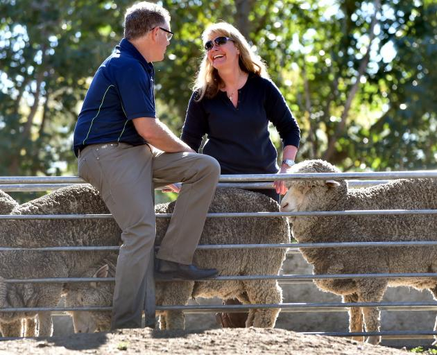 Craig Smith and Devold chief executive Cathrine Stange inspect merino sheep at the Paterson...