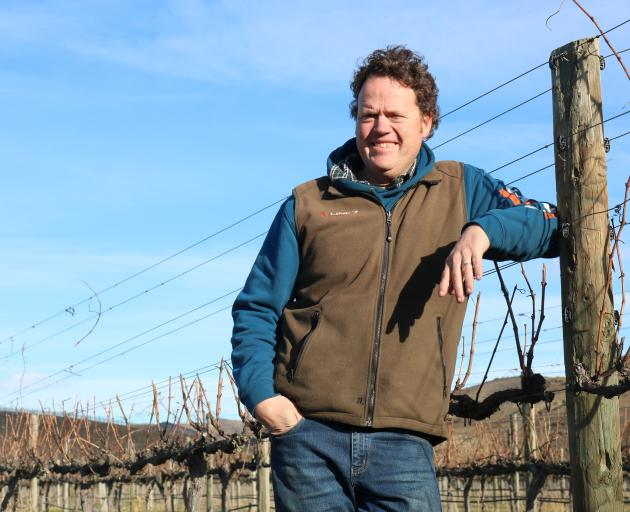 Central Otago Winegrowers Association spokesman James Dicey beside his finished crop for the year in Bannockburn. Photo: Tom Kitchin
