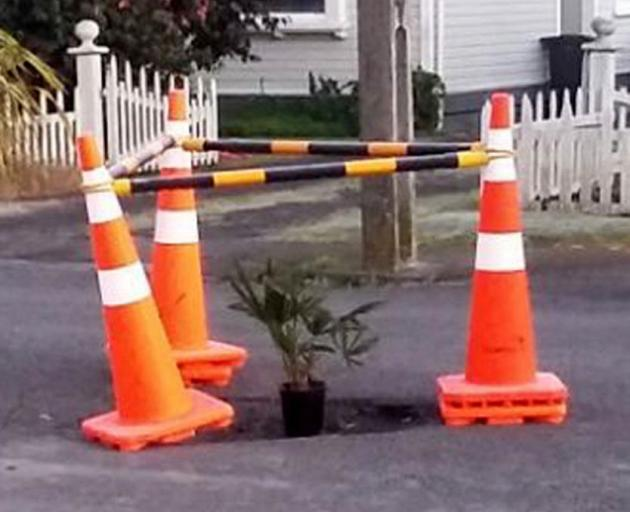 In Hastings they treat their potholes like this - the ubiquitous road cones are in place, with a...