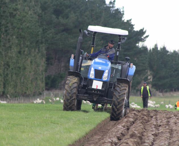 Last year's Young Farmer of the Year Nigel Woodhead, of Milton, competes in the Silver Plough class at the New Zealand Ploughing Championships earlier this year as a special guest competitor. Photo: SRL files