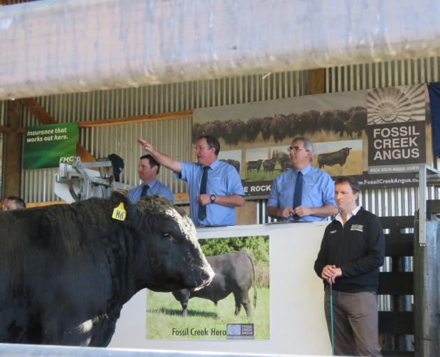 PGG Wrightson livestock genetics rep Callum McDonald (left), auctioneer John McKone (centre) and Otago area livestock manager Mark Yeates auction one of the Fossil Creek Angus bulls as owner Blair Smith watches. Photo: File
