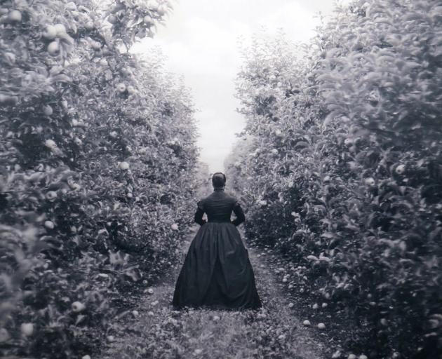 Apple Orchard, Heretaunga, by Yuki Kihara