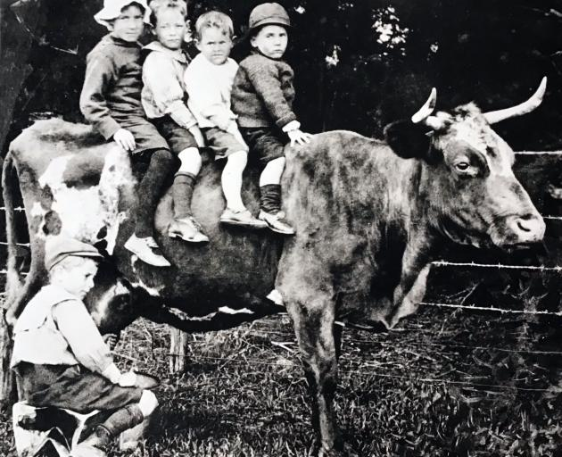 The 1957 photo of the cow with triplets reminded Gavin Dann of this picture in his late mother's...