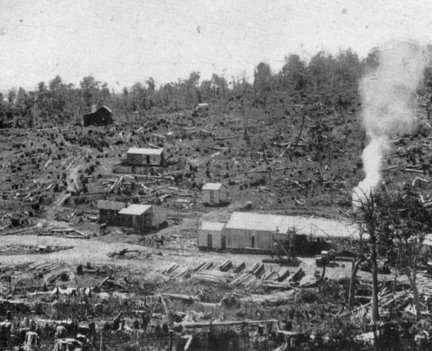 Messrs Keith and Butler's sawmill at Limehills, Southland, showing how the bush has been cleared. - Otago Witness, 7.8.1918.