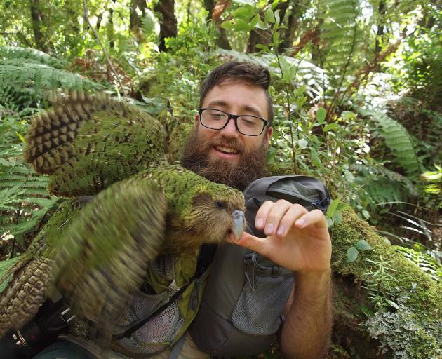 Sirocco and one of his human assistants, Department of Conservation kakapo ranger Jake Osborne.