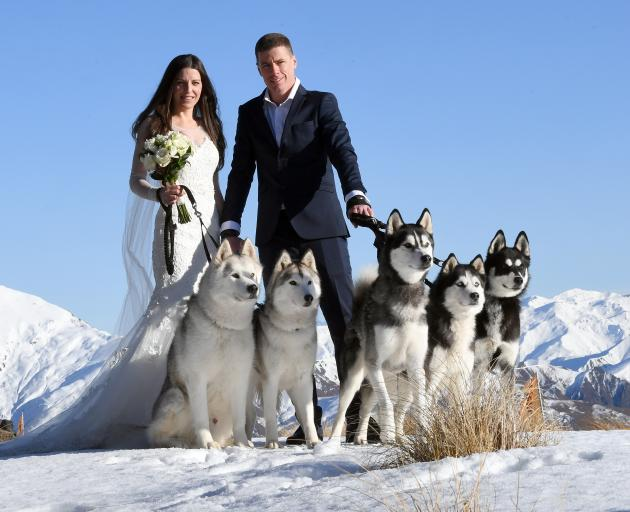 Sledding led to a weddingNewlyweds Tania and Ash Hastelow with their dogs Ranger, Roxy, Quade,...