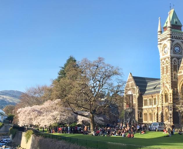 Even walking through the University of Otago campus leaves me feeling a bit more intelligent. Photo: Paul Gorman
