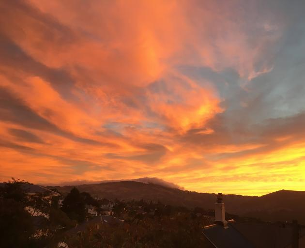 The last of the WWT cloud photos. A vivid cirrus and altocumulus sunrise over Dunedin and Mount...
