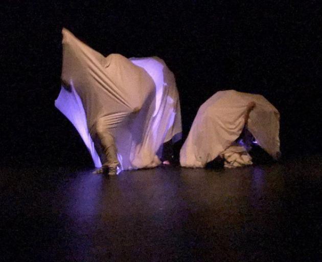"Rebound Dance Company在Andrew Shepard的作品中播放""Stuffed""这个词,作为出生于好奇心的一部分。照片:提供"