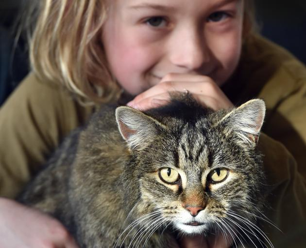 Levi Milner (7) is reunited with Bella, who was missing for three and a-half years. Photo: Peter McIntosh