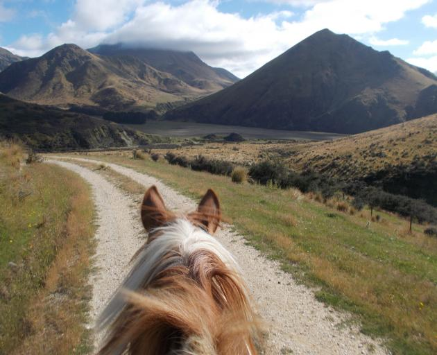 Viewed from horseback the Otekaieke Bridle Trail stretches into Waitaki Valley back country. The...