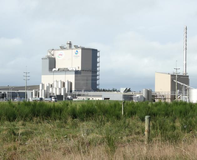 Oceania Dairy's Glenavy plant could need 100 more staff next year. PHOTO: DANIEL BIRCHFIELD