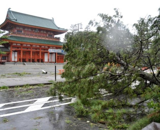 A tree damaged by Typhoon Jebi is seen in front of Heian Shrine in Kyoto. Photo: Reuters