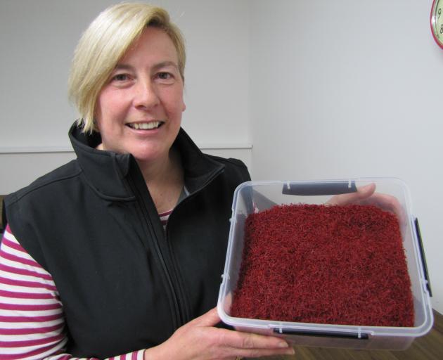 Wendy King shows off about 300g of Wynyard Estate saffron. Photo: Pam Jones