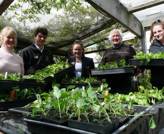 Tokomairiro High School horticulture class (from left) teacher Sue Nelson, Levin Coulter (16), Alicia Gillies (17), and Kelsey Carter (16) are joining forces with Milton grower John Goldsworthy (85) once more this year to provide affordable vegetables for