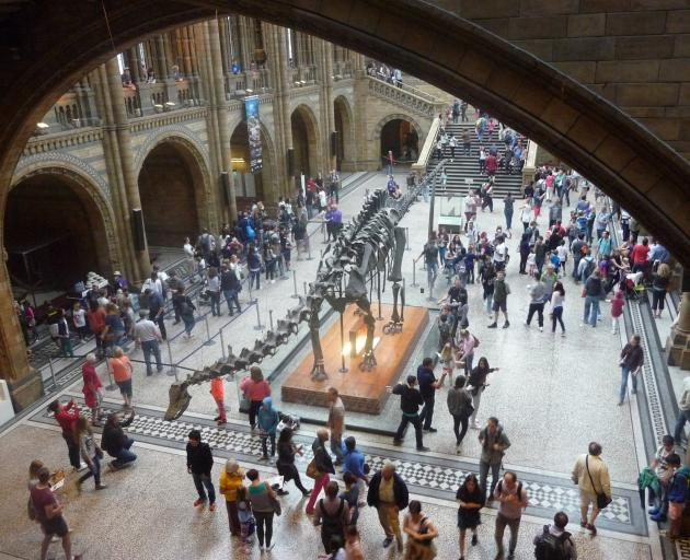 . . . which bears more than a passing resemblance to this skeleton of a diplodocus in the foyer...